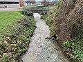 Ruisseau Merdasson - Marcigny (FR71) - 2020-12-25 - 1.jpg