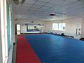 SVK-std-taekwondo1.JPG