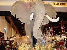 Safari Club International - Wikipedia