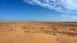 Sahara 1.jpg