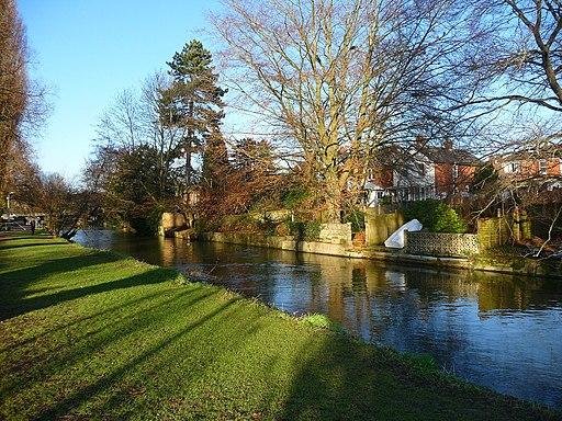 Salisbury - River Avon - geograph.org.uk - 1717581