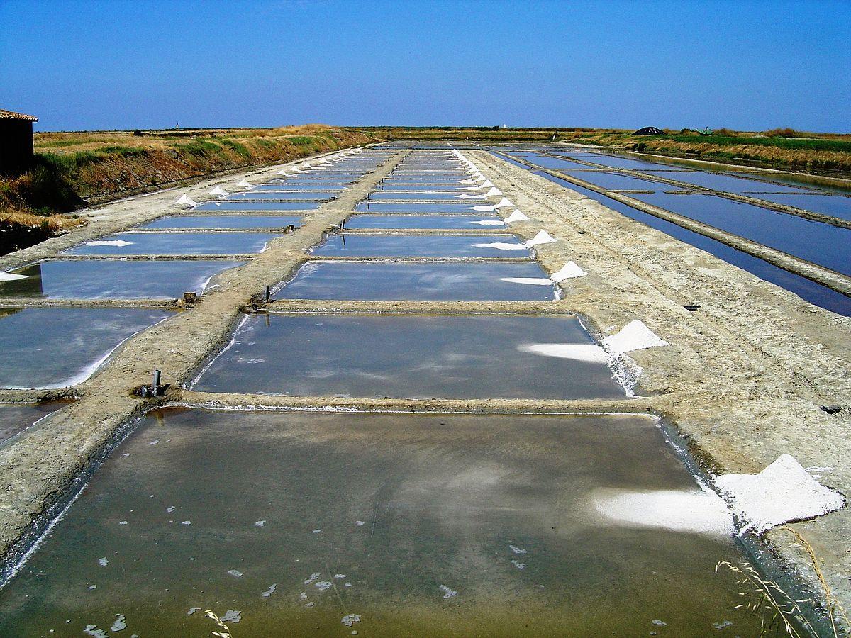 Evaporation pond for Design of evaporation pond