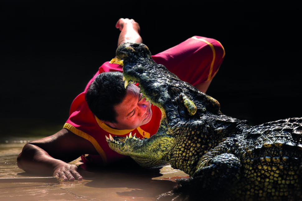 Samutprakarn CrocodileFarm2
