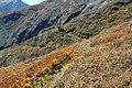 Sankhuwasabha, Nepal - panoramio (19).jpg