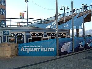 Santa Monica Pier Aquarium - The Santa Monica Pier Aquarium is located beneath the famous Santa Monica Pier.