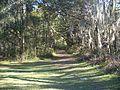 Santos CFBC trail 01.jpg