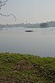 Santragachi Lake - Howrah 2013-01-25 3591.JPG