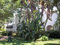 Sarasota FL Whitfield Estates-Broughton St HD 7211-02.jpg