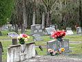 Sasser Landing Cemetery 2.JPG