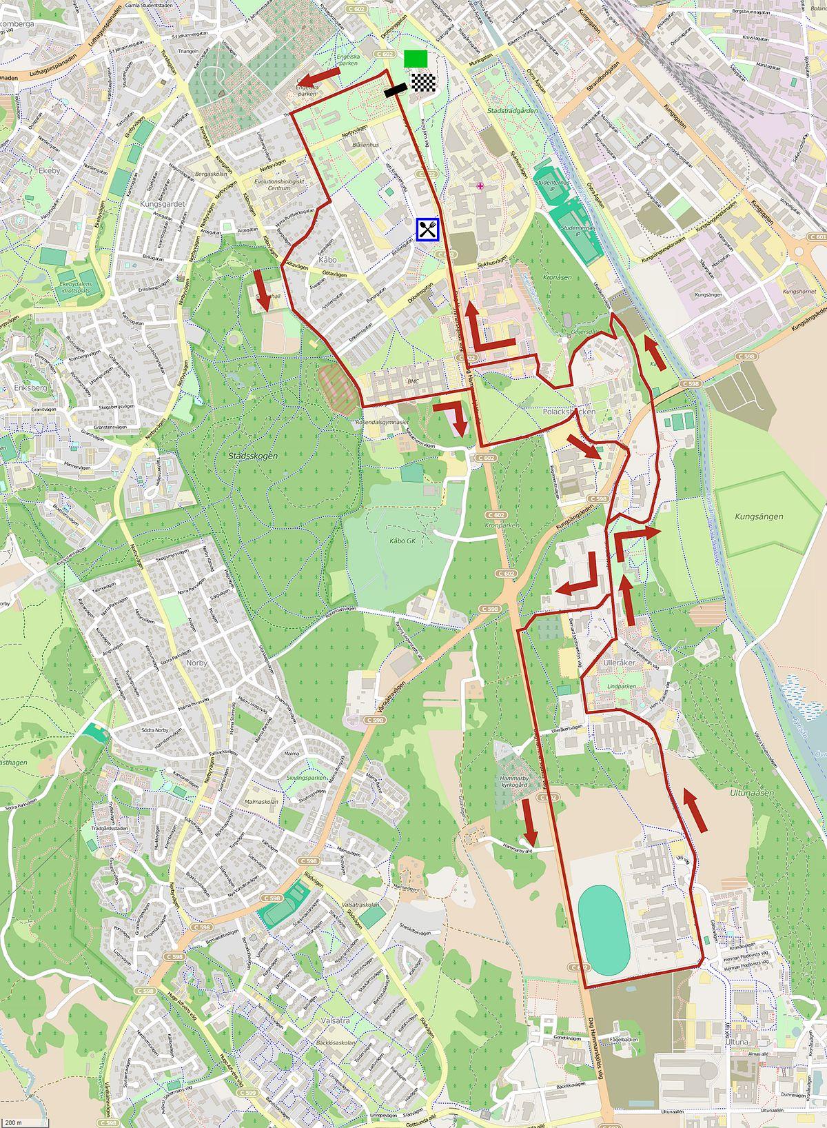 Scandinavian Race Uppsala