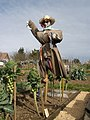 Scarecrow, Greenway Lane Allotments - geograph.org.uk - 1180298.jpg