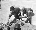 Scientists preparing fish organs for examination, Bikini Atoll, 1947 (DONALDSON 11).jpeg