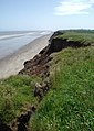 Sea Field Cliff, Rolston - geograph.org.uk - 457459.jpg