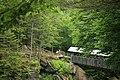 Sentinel Pine Bridge (3372213276).jpg