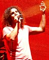 Serj Tankian on stage.jpg