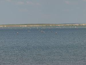 Lake Seyfe - A view from Lake Seyfe