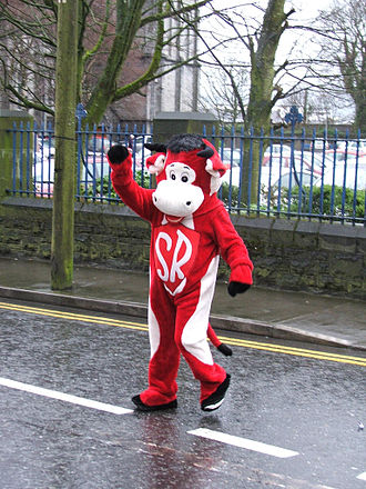 Sligo Rovers F.C. - Benny the Bull, the Sligo Rovers team mascot