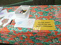 Smithsonian Folklife Festival 2013 - woodcarvings to rub.JPG