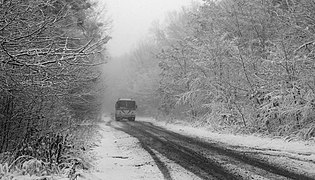 Snowy road Sosonka 2017 BW G1.jpg