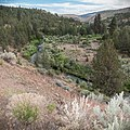South Fork John Day Wild and Scenic River (36265623992).jpg