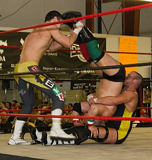 Professional wrestling double-team maneuvers - Two wrestlers execute an aided piledriver