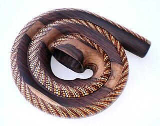 Modern didgeridoo designs didgeridoo innovations recognized by musicologists