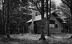 Middlesex (novel) - Eugenides found the environment at MacDowell Colony productive.