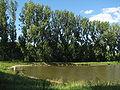 Stavěšice - rybník.JPG