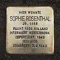 Stolperstein Neuhaußstraße 3 Sophie Rosenthal.jpg