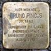 Stolperstein Peter-Hille-Str 17 (Frihg) Bruno Pincus.jpg