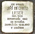 Stolperstein für Jiri Lieser.JPG