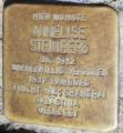 Stolperstein für Steinberg, Annelise.png