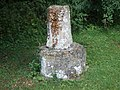 Stump of an ancient cross - geograph.org.uk - 1417111.jpg
