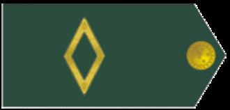 Sub-lieutenant - Brazilian Sub-Lieutenant insignia