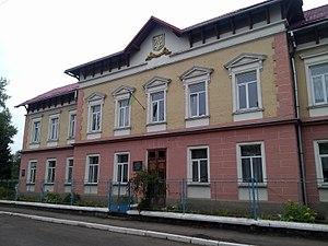 Sudova Vyshnia - Image: Sudova Vyshnia school