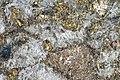 Sulfidic tremolitite (platinum-palladium ore) Stillwater mine MT.jpg