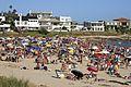 Summer Crowd (5364201645).jpg