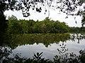 Sungei Buloh Wetland Reserve.jpg