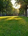 Sunny Strip (7965469970).jpg