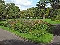 Sydney Gardens, Yeovil - geograph.org.uk - 1429928.jpg