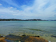Sydney Harbour, from Dumaresq Road, Rose Bay, New South Wales (2011-01-05) 03