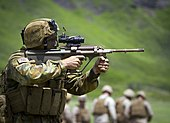Tactical Live Fire Demonstration during RIMPAC 2014 140729-M-QH615-107.jpg