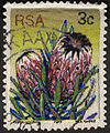 Tamlin Blake - 3rd Definitive Issue 3c Protea neriifolia.jpg