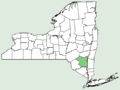 Tanacetum coccineum NY-dist-map.png