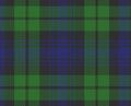 Tartan Clan Campbell.png