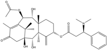 The molecular structure of taxine B