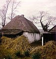 Thatched cottage at Kennetstown, Co. Meath - geograph.org.uk - 663820.jpg