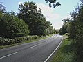The A337 at Brockis Hill, New Forest - geograph.org.uk - 54964.jpg