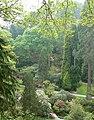 The Dell, Bodnant Gardens - geograph.org.uk - 804538.jpg