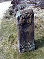 The Face Stone - geograph.org.uk - 24229.jpg